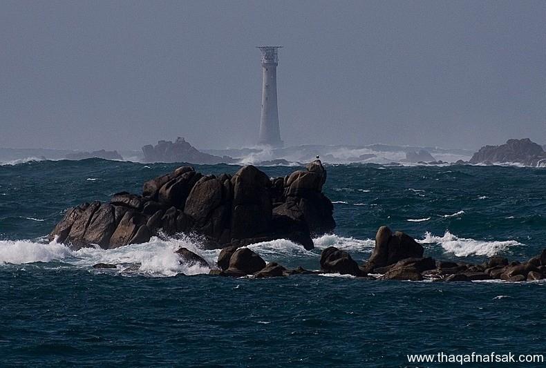 أصغر جزيرة في العالم أضغر-جزيرة-