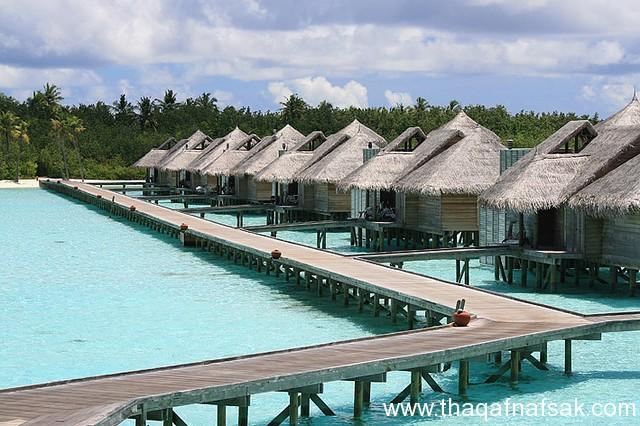 أفضل المنتجعات في جزر المالديف ، ثقف نفسك10 رحلة إلى أرض الجمال ، مع أجمل 10 منتجعات في جزر المالديف
