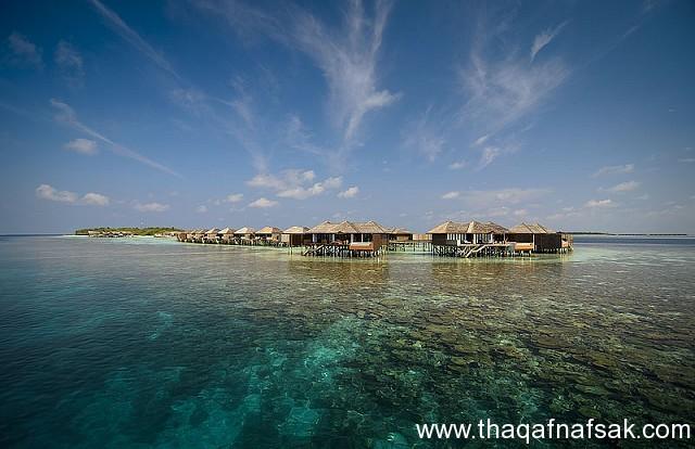 أفضل المنتجعات في جزر المالديف ، ثقف نفسك9 رحلة إلى أرض الجمال ، مع أجمل 10 منتجعات في جزر المالديف