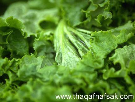 الخضروات الورقية ثقف نفسك