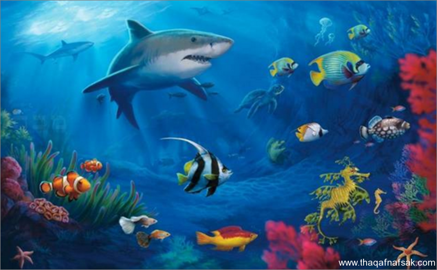 عجائب الدنيا السبع تحت الماء عجائب-تحت-ا