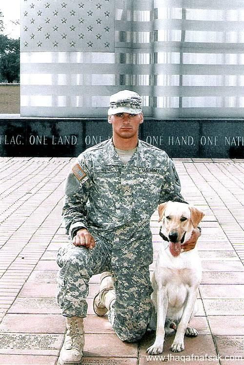 كلاب . ثقف نفسك 17 تخيل كيف يتم استخدام الكلاب في الحروب