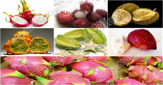 انواع الفواكه بالصور