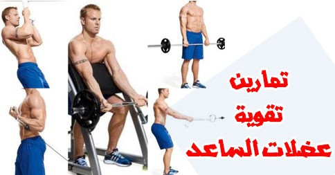بالصور تمارين تقوية عضلات الساعد %D8%AA%D9%85%D8%A7%D