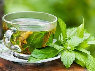 الشاي الأخضر بالنعناع