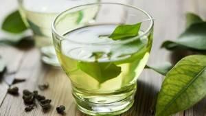 الشاي الأخضر للتخسيس