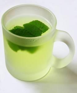 شاي النعناع