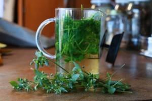 شاي عشبة الطير