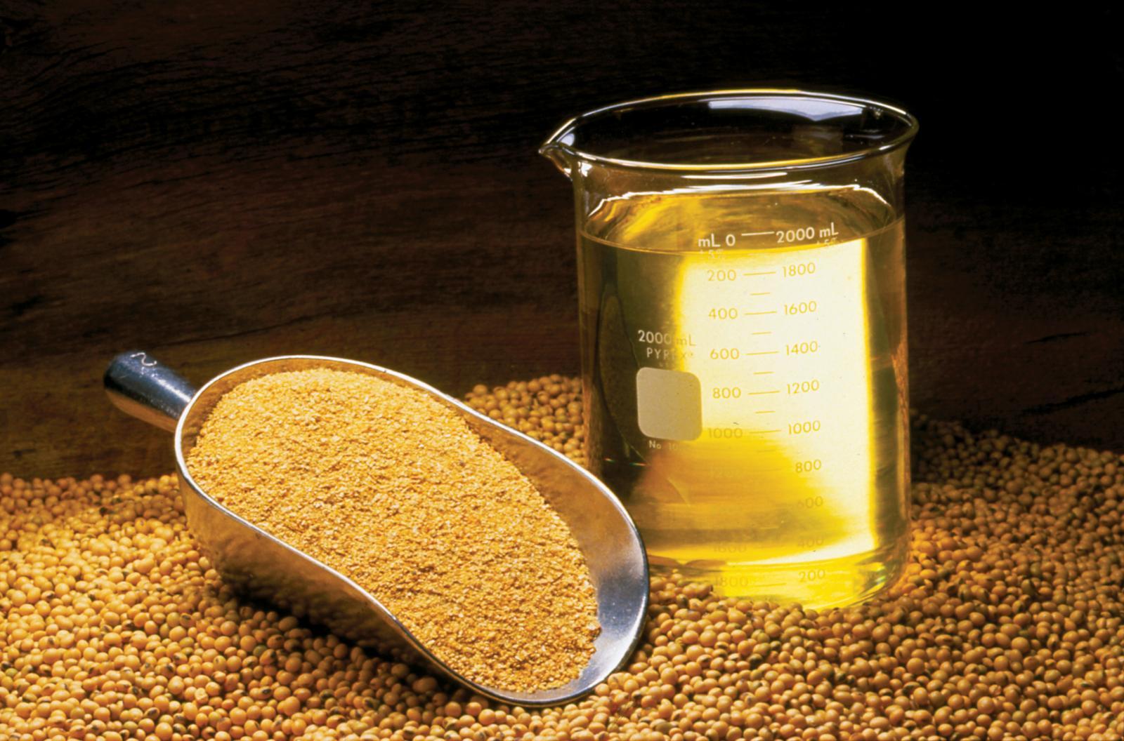فوائد زيت الصويا وهل هو بديل صحي عن الزيوت التي نستخدمها ؟ %D8%B2%D9%8A%D8%AA-%