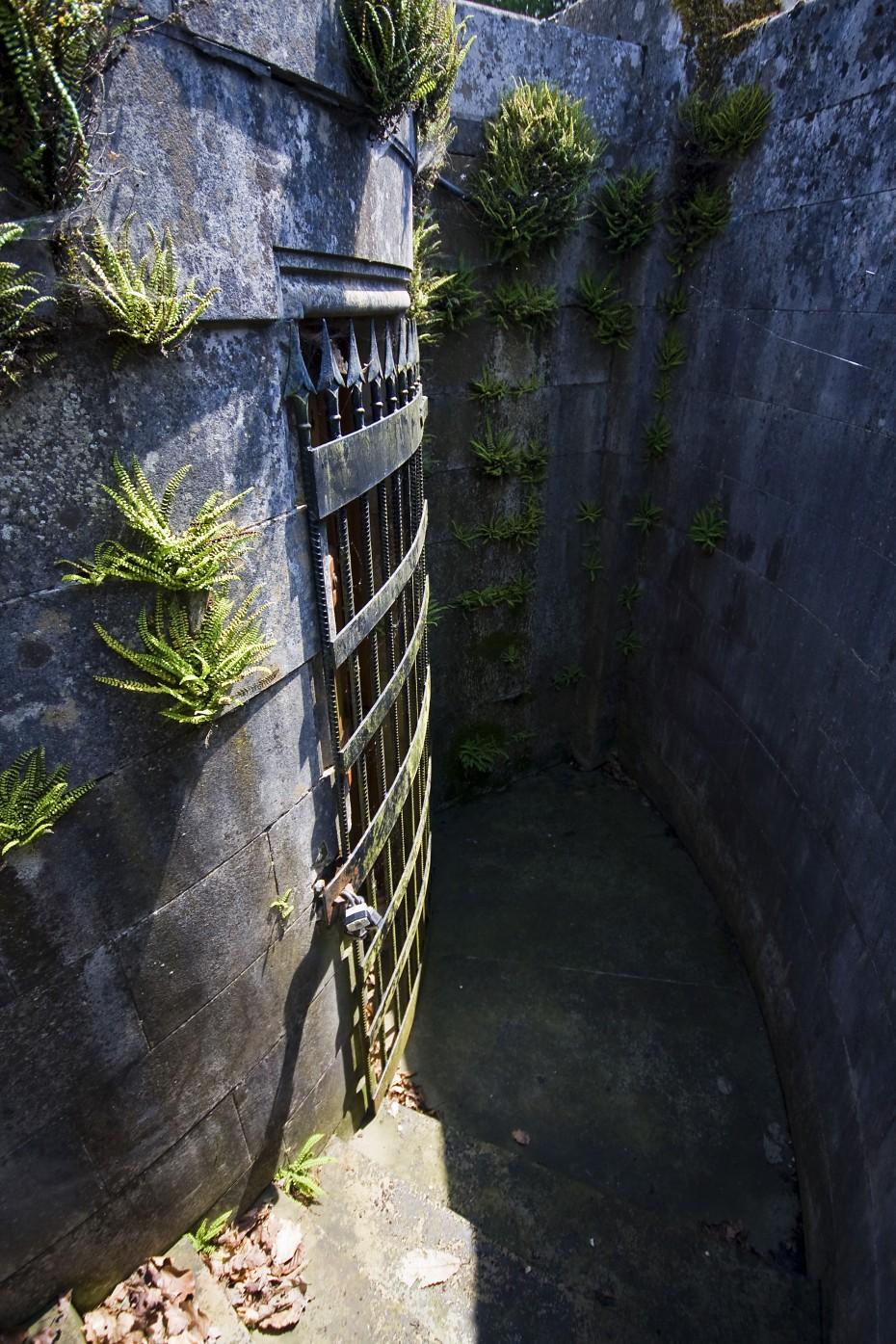 قاعة أثرية فخمة المياه