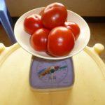 عمل مربي الطماطم بالصور  -مربي-الطماطم-بالصور-1-150x150