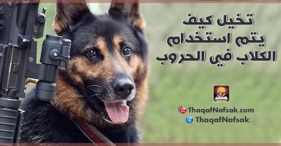 3881 تخيل كيف يتم استخدام الكلاب في الحروب