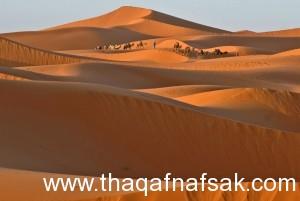 أكثر 10 أماكن جذباً للسياحة فى المغرب 42-300x201.jpg