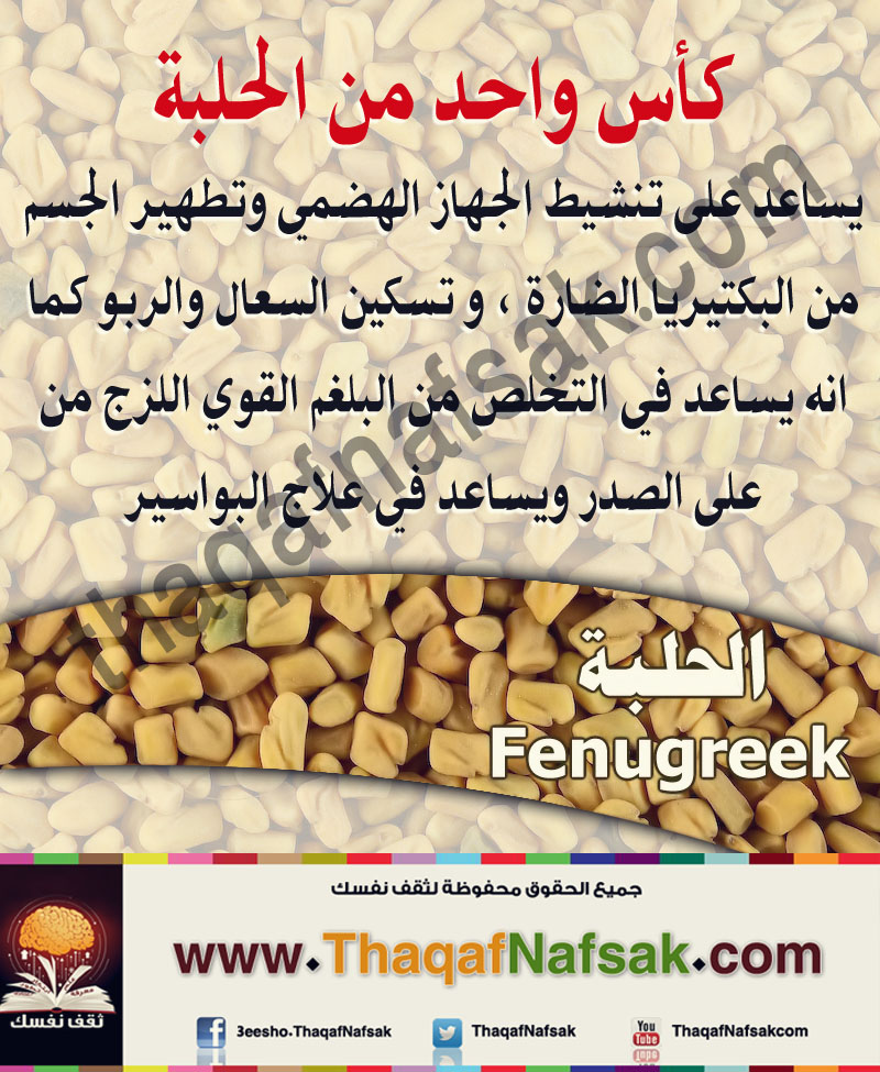 الحلبـة Fenugreek Info25-