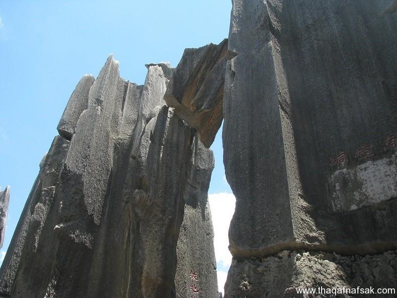 غابة شيلين في الصين ، ثقف نفسك 9