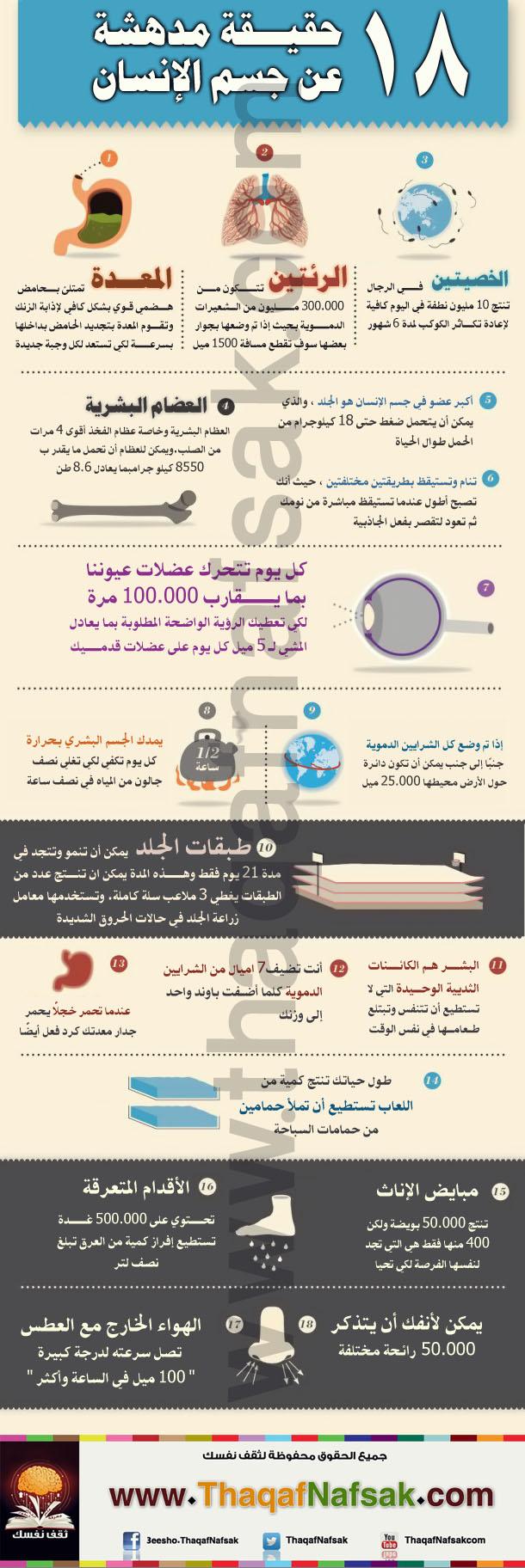 info18-