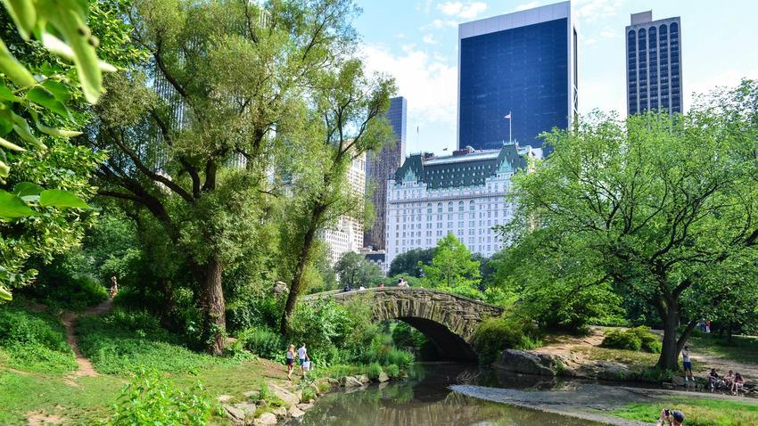 اجمل الحدائق في العالم-الحديقة المركزية في نيويورك