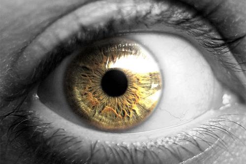 حقائق غريبة عن العين