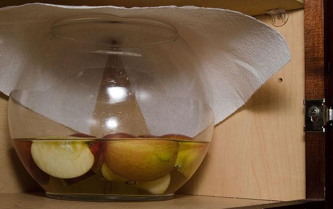طريقة عمل خل التفاح في المنزل بالصور
