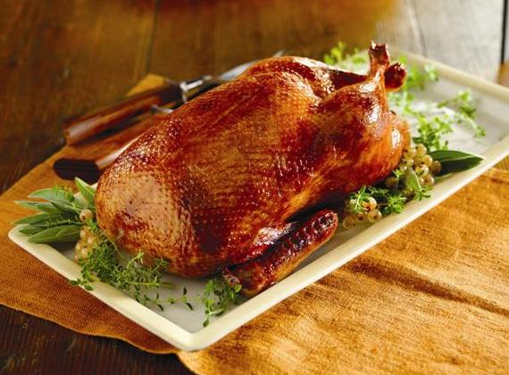 ماهي فوائد لحم البط