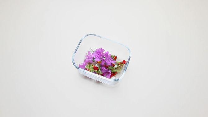 2511f8647 طريقة عمل العطور في المنزل بالصور ٥ طرق متنوعة ذات رائحة جذابة