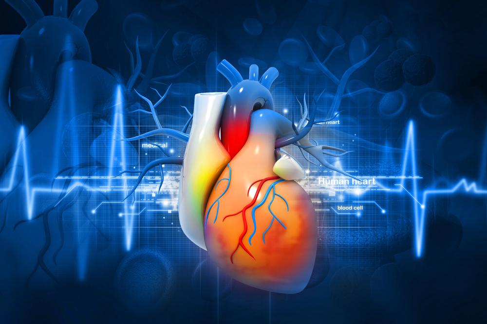 كيف تحمي نفسك من امراض القلب