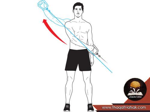 للرجال تمارين لتقوية عضلات الظهر بالصور