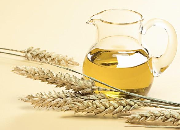 زيت-جنين-القمح