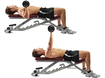 تقوية عضلات الصدر