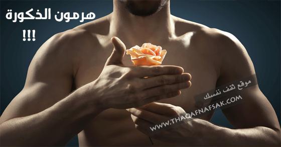 هرمون-التستوستيرون-أو-هرمون-الذكورة