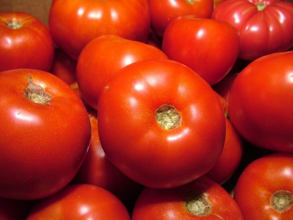 رجيم الطماطم