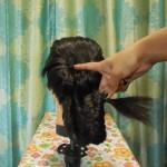 عمل تسريحة شعر ذيل السمكة المعكوسة بالصور 10