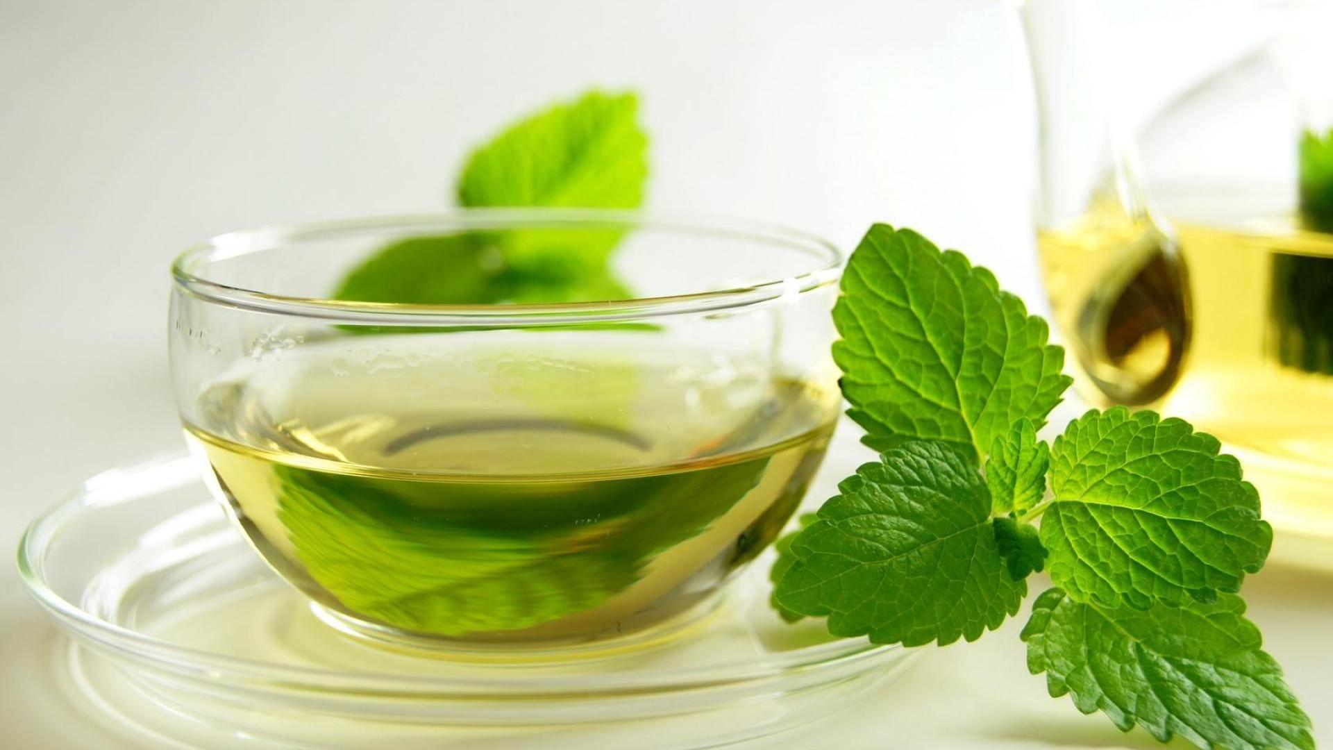 Image result for الشاي الأخضر