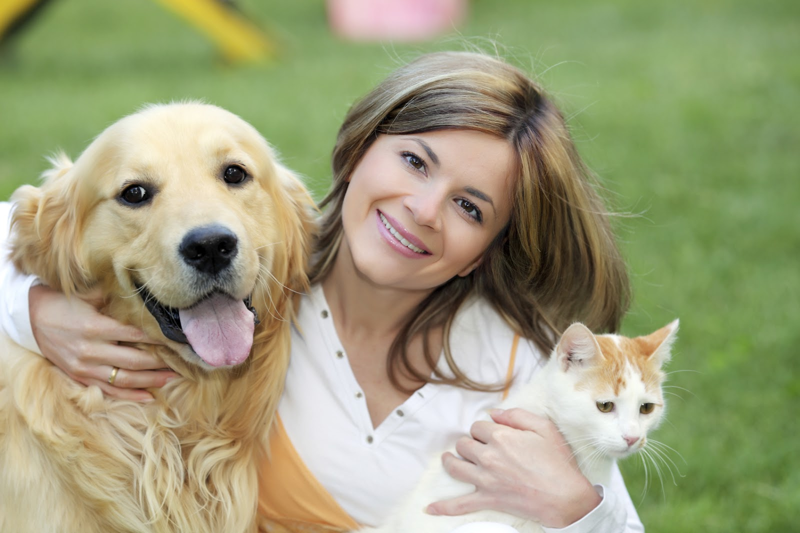 رعاية الحيوانات الأليفة 2