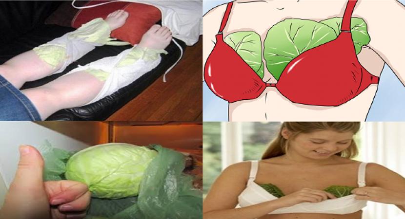 تطبيق الكرنب علي الصدر والساقين لتخلص من الصداع