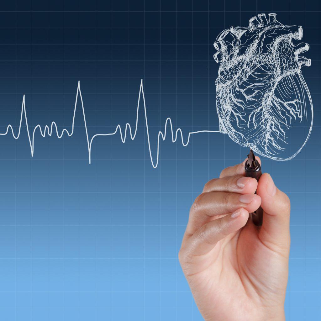 550729899 سرعة ضربات القلب أسبابها وعلاجها وطرق الوقاية منها