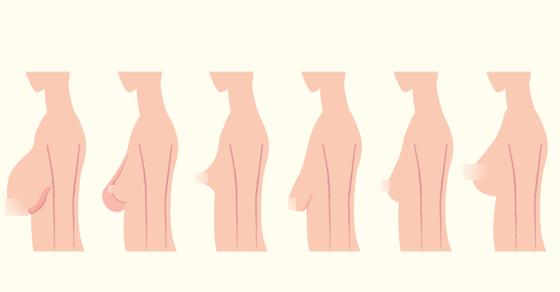 معرفة نوع الجنين من شكل ثدي الأم أثناء الحمل ثقف نفسك