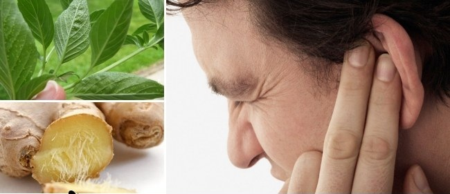 وصفات منزلية لعلاج ألم الأذن 26 وصفة بسيطة ثقف نفسك
