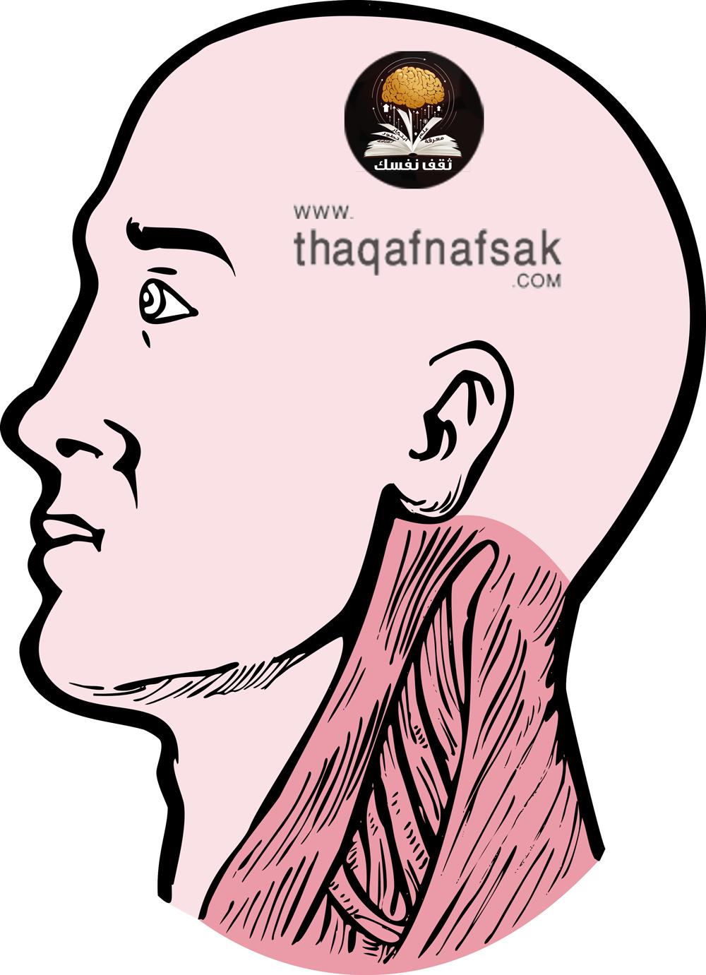 ما الذي يسبب صداع خلف الرأس