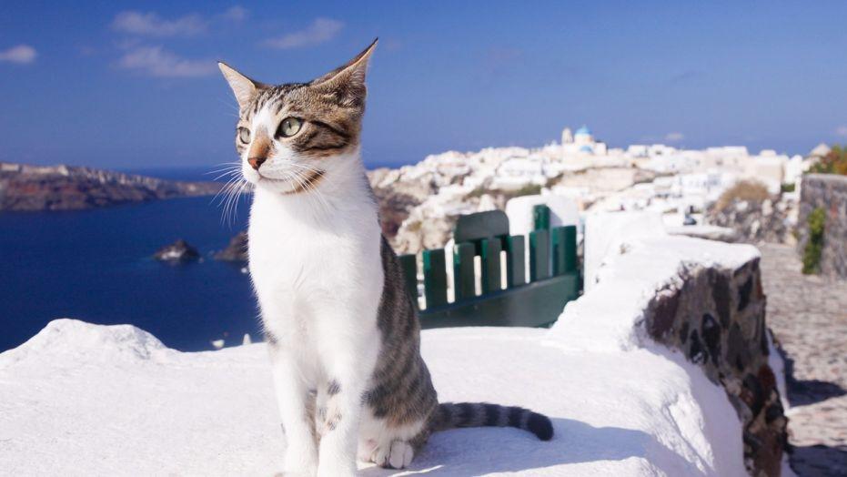 جزيرة سيروس Syros اليونان