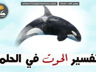 الحوت في الحلم