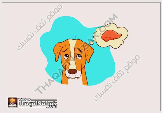 امراض الكلى في الكلاب