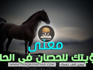 الحصان في الحلم