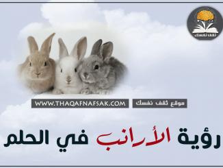 رؤية الأرانب في الحلم