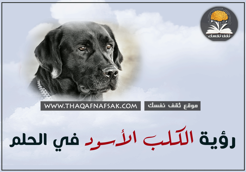 تفسير الكلب الأسود في الحلم ثقف نفسك