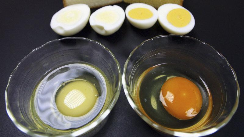 صفار البيض لتبييض البشرة