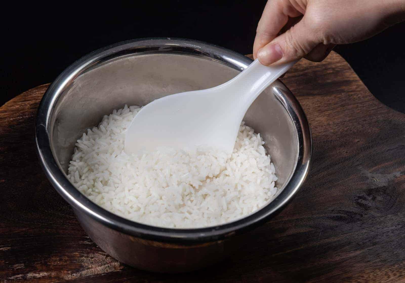 نظام رجيم الأرز