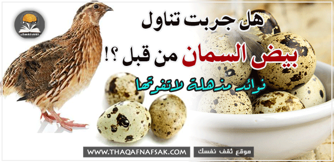 فوائد بيض السمان الصحية