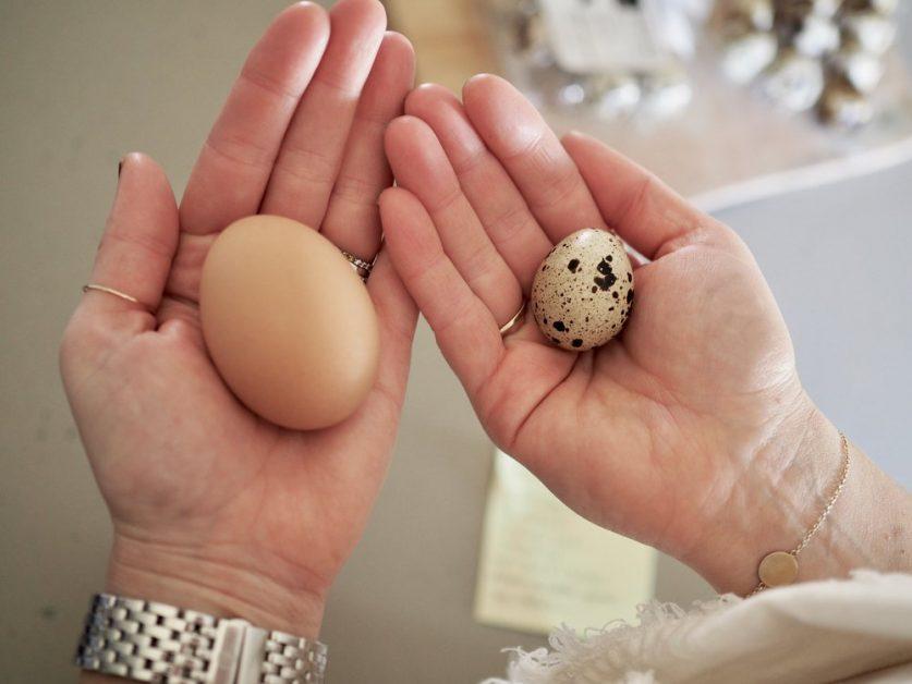 بيض السمان