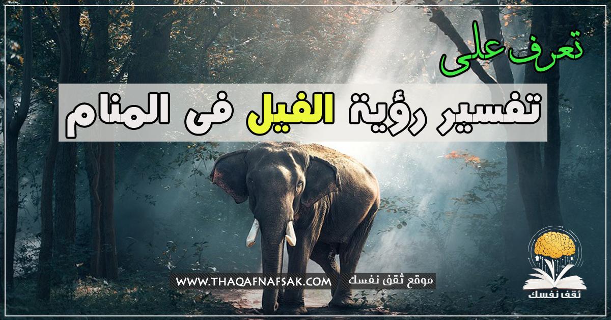 رؤية الفيل فى المنام
